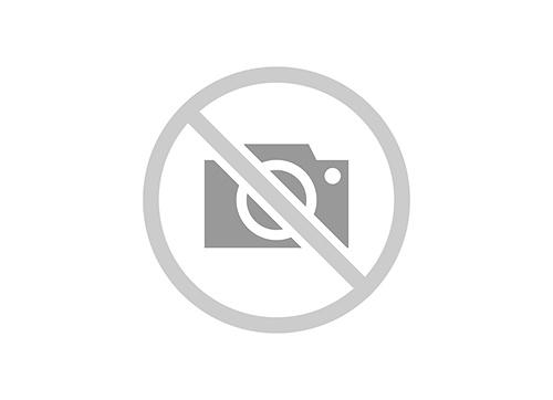 Kazoo metaal goudkleurig