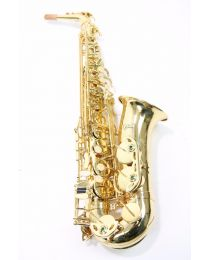 Eb Altsax RS Berkeley Elite Series ALS502
