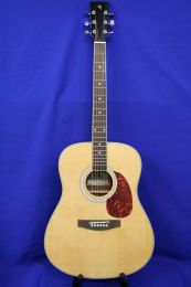 Westerngitaar GS model E150 Dreadnought